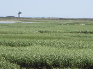 massachusetts, cape cod, provincetown, wood end lighthouse