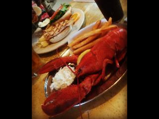 Lunch, lobster, seafood, bar harbor