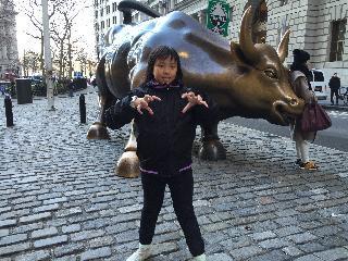 new york, new york city, wall street, bull