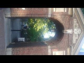 Harvard, Boar Symbol, Ivy League, Boston