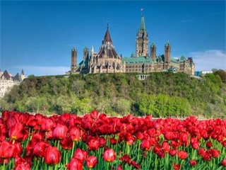 2-Day Ottawa Tulip Festival and City Tour from Toronto