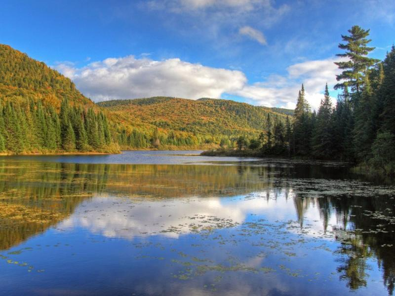 1-Day Saint-Sauveur Village, Lac des Sables Cruise, and Mont-Tremblant Nature Tour from Montreal