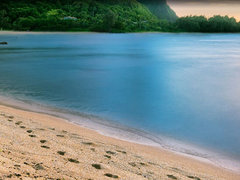 3-Day Hawaii Deluxe Tour from Hilo/Honolulu (Big Island)
