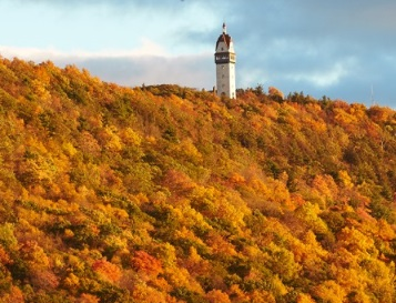 1-Day Maple Foliage Tour in Connecticut from New York...