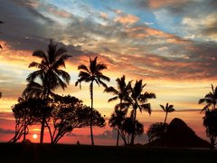 4-Day Pearl Harbor, Mini Circle Island Tour from Honolulu with Airport Transfers