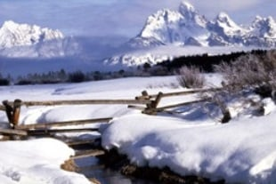 8-Day Yellowstone, Grand Teton, Jackson and Antelope Canyon Winter Tour from Los Angeles / Las Vegas
