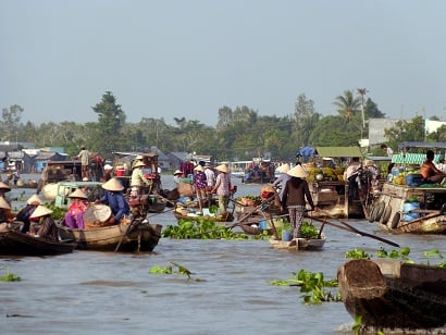 3-Day Mekong Delta and Tra Su Sanctuary Tour from Ho Chi Minh City