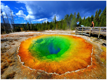 9-Day Yellowstone National Park, Mt Rushmore, Grand Canyon and Las Vegas Tour from Denver
