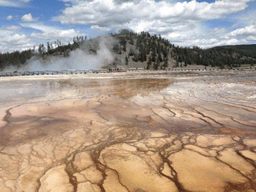 11-Day Yellowstone Overnight, East&South Rim Grand Canyon, Theme Parks Tour from Los Angeles with Airport Transfer