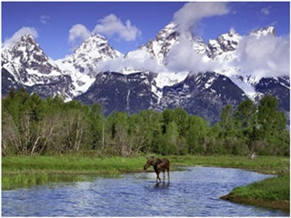 7-Day Yellowstone, Grand Teton, Seattle, Jackson Tour from Vancouver with Airport Transfer