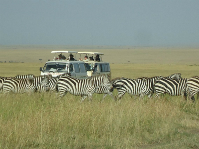 7-Day Magical Kenya Scheduled Safari Tour from Nairobi with Airport Transfer