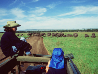7-Day Across Kenya Scheduled Safari Tour from Nairobi with Airport Transfer