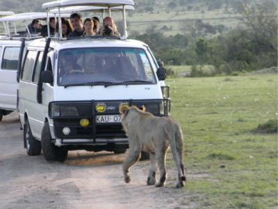 9-Day Karibu Kenya Safari Tour from Nairobi with Airport Transfer