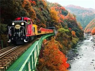 8-Day Canada Agawa Canyon, Niagara Falls Tour from Toronto