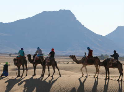 10-Day Exotic Morocco Camping and Camel Trek Tour from Marrakech with Airport Transfer