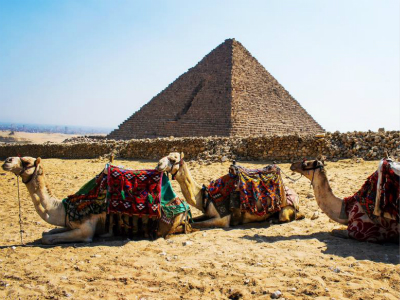 15-Day Felucca Sailtrek Egypt Land and Cruise Tour from Cairo with Airport Transfer