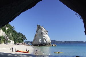 7-Day North Island Beetham Tour from Auckland