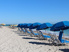 4-Day Miami, Everglades, Key West, Fort Lauderdale Tour from Miami/Fort Lauderdale with Airport Transfers