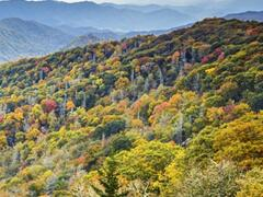 6-Day Atlanta, Great Smoky Mountains, Chattanooga Tour from Atlanta with Airport Transfer