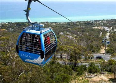 Mornington Peninsula Tour with Eagle Skylift from Melbourne