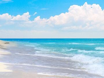 1-Day Bimini Tour from Miami