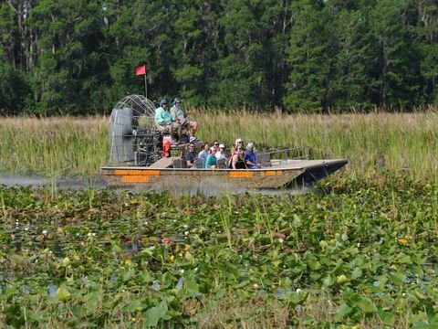 One Hour Scenic Airboat Tour