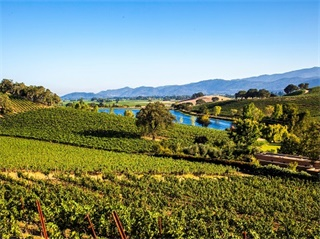 3-Day Monterey Bay,  Napa Valley and 17-Mile Drive Tour from San Francisco