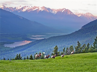 9-Days Rocky Mountains, Banff, Jasper, Victoria, Whistler Tour from Vancouver