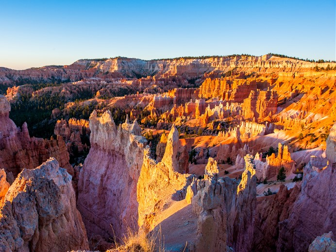 9-Day Yellowstone National Park, Bryce Canyon Tour from Los Angeles/Las Vegas