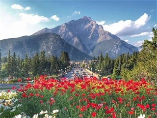 9-Days Victoria, Chemainus, Whistler, Rocky Mountains, Banff, Calgary Tour from Vancouver