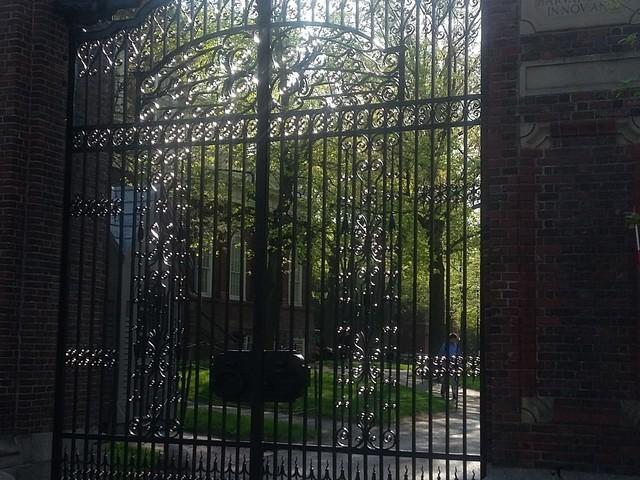 Havard University - Main gate