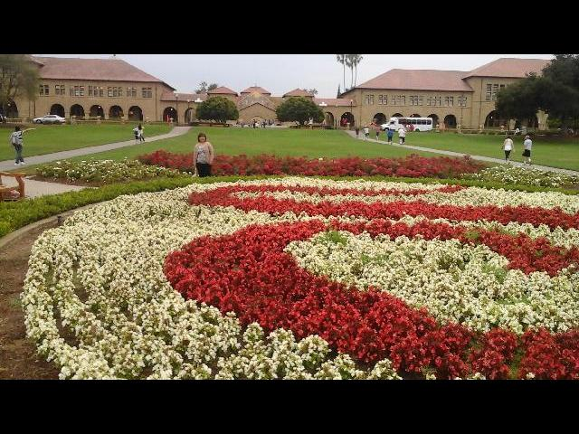 At Stanford University front lawn garden