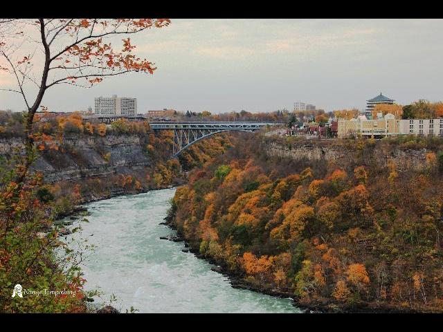 The Whirlpool section of the Niagara river.