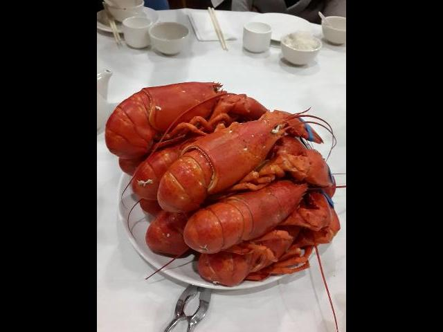 Dinner Lobster in Boston