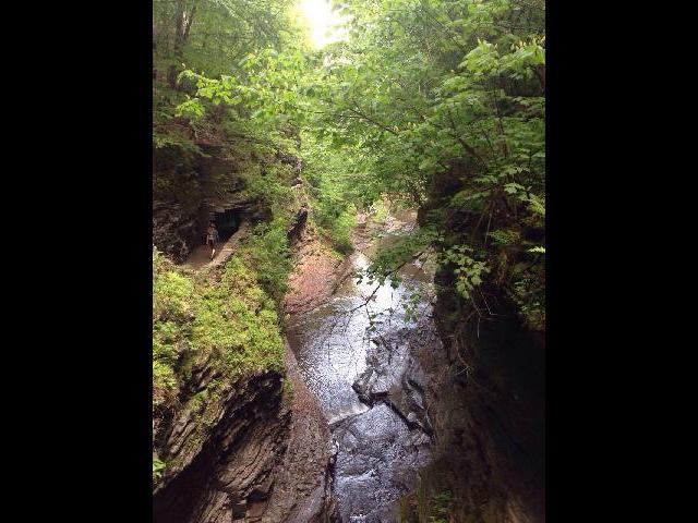 watkin glen state park