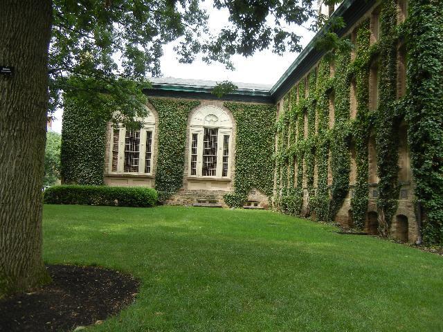 Princeton University's lovely campus