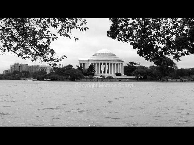 Beautiful shot of Jefferson Memorial