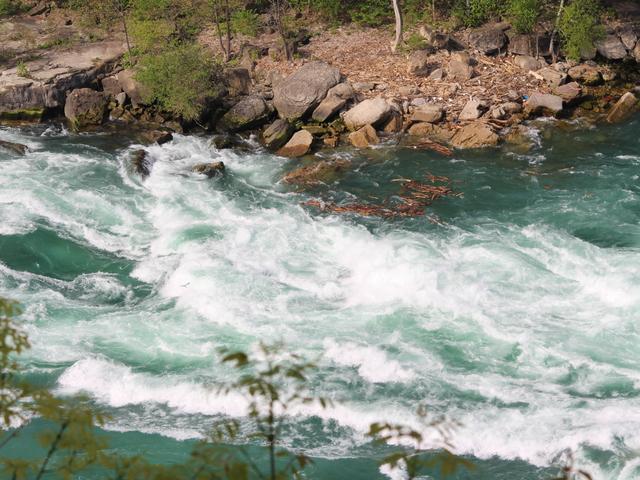 Niagara Rapid