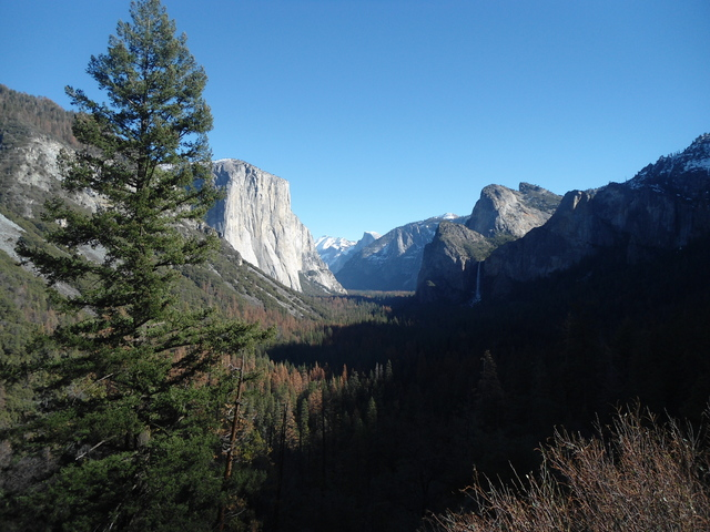 Yosemite <3