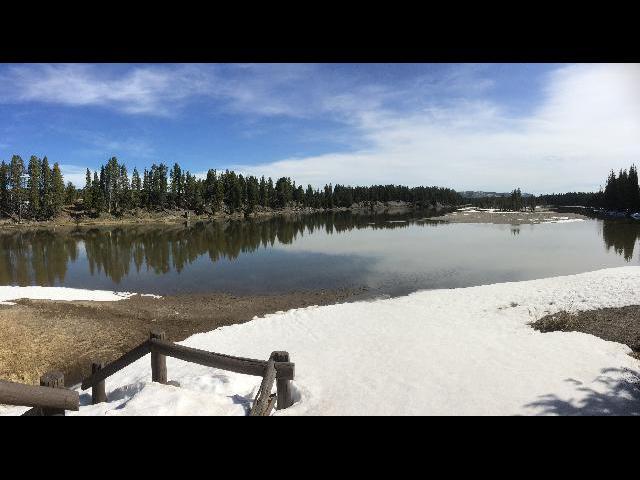 Yellowstone cutthroat trout lake