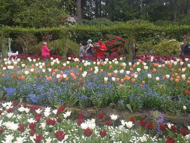 Beauty of Butchart garden