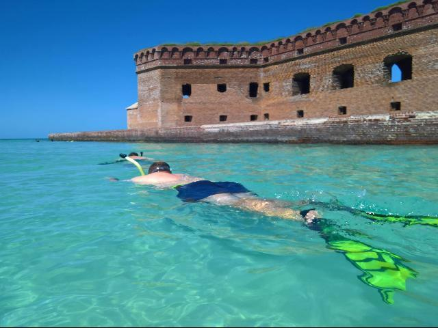 Snorkeling on Dry Tortugas
