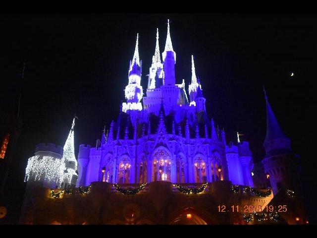 Magic Castle at Disney World
