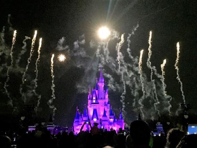 magic kingdom firework!