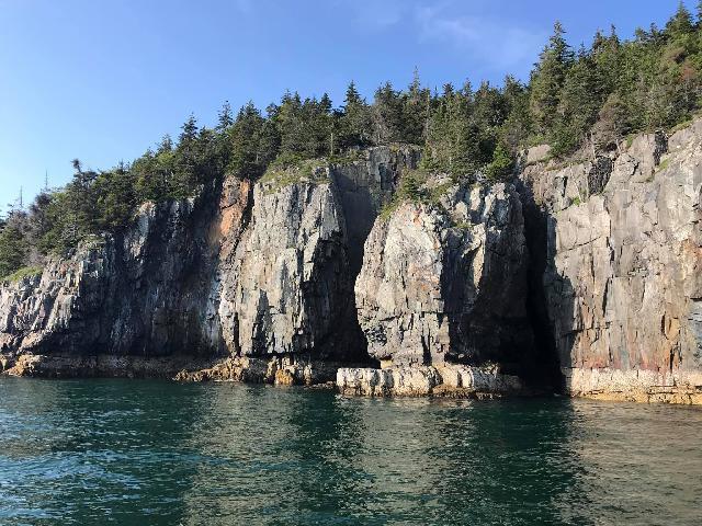 Maine Nature Cruise