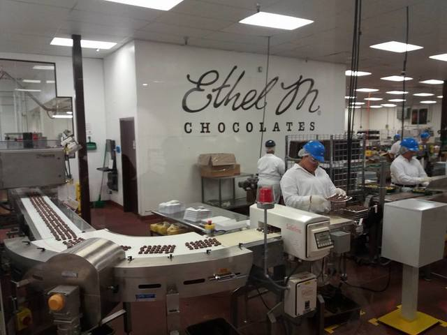 at the chocolate factory
