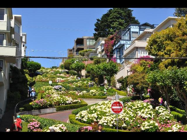 The exquisite garden in San Francisco