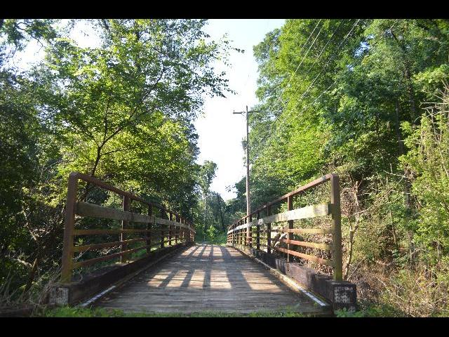 Wooden foot bridge in the woods of Lookout Mountain in Chattanooga, Tennessee USA