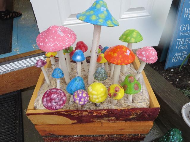 Rainbow colored mushrooms in Aquinnah town on Martha's Vineyard Island in Massachusetts, USA