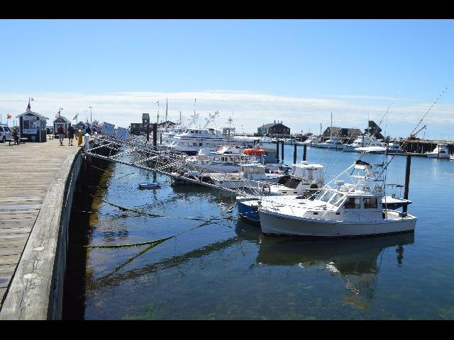 Boats docked in the harbor at MacMillan Pier in Provincetown, Cape Cod, Massachusetts USA